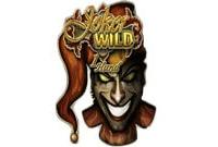 Игровые автоматы Joker Wild